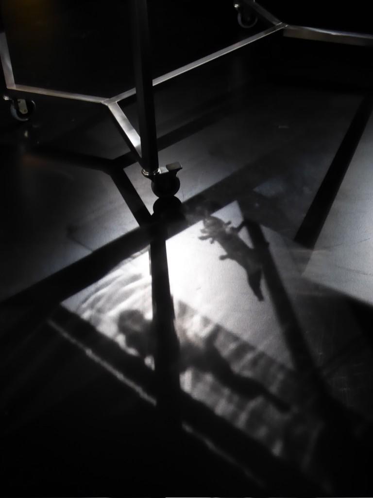 """Neotenous Dark Dwellers (Lygophilia), Robertina Sebjanič, 2018 - Photo Annick Bureaud"