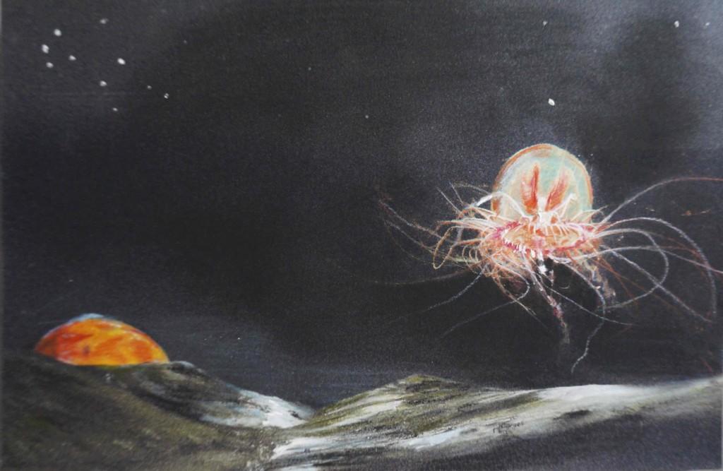 """""""La méduse de la Lune"""", par Fabienne Gambrelle ; illustrations Anaïs Tondeur & Gabriel Grandry"""