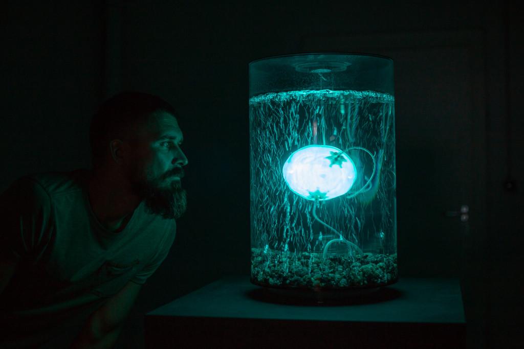 """ArchaeaBot"", Anna Dumitriu & Alex May, image Vanessa Graf"